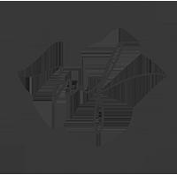 Logo mit Kreis 200px / m-foerster.com